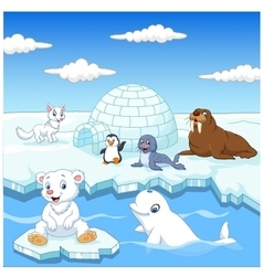 Arctics animals collection set with igloo ice hous vector
