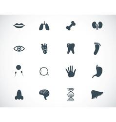 Black anatomy icons set vector