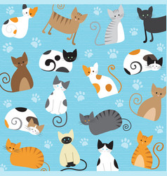 Meaw pattern vector