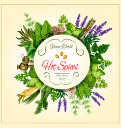 Spices and leaf vegetable poster for food design vector