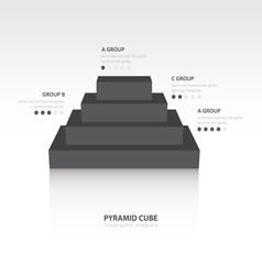 Business infographics pyramid cube black color vector