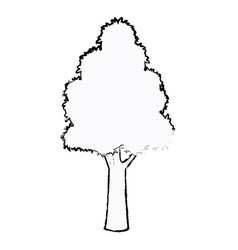 Tree plant botanic foliage sketch vector