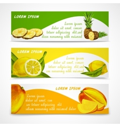 Tropical fruits banner set vector image vector image