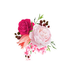 elegance flowers bouquet of color roses and tulip vector image