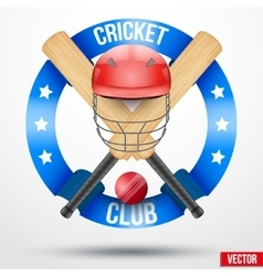 Cricket bats and helmet with ribbons vector