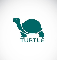Image of an turtle design vector