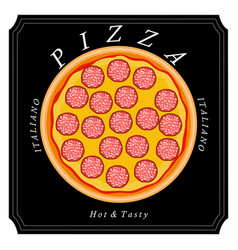 the food pizza vector image