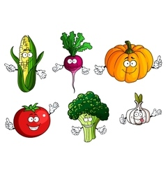 Tomato pumpkin broccoli corn radish and garlic vector