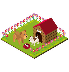 3d design for dogs in the yard vector image