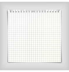 Note paper sheet with squares vector image