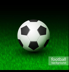 Realistic soccer ball on field grass vector
