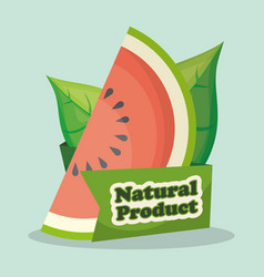 watermelon natural product market design vector image