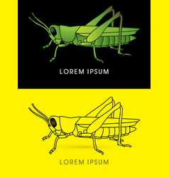 Grasshopper side view vector