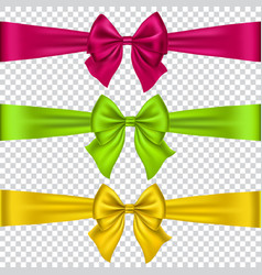 Colorful bows set isolated on transparent vector