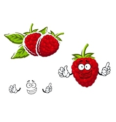 Cartoon red raspberry fruit character vector image vector image