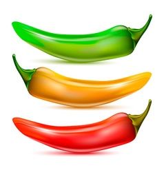 Pepper Icon Set vector image vector image