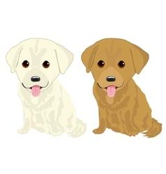 portrait of two cute labrador puppies vector image