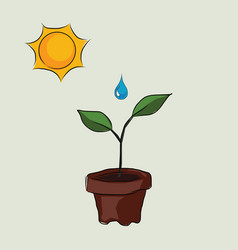 Planting process in pots with sun and water drop vector