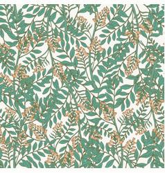 elegant botanical seamless pattern with acacia vector image vector image