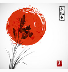 iris flowers and big red sun hand drawn with ink vector image vector image