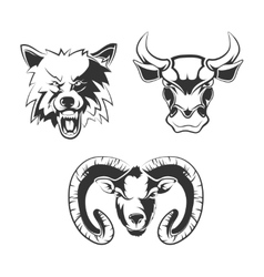 elements for sport team labels with wolf vector image