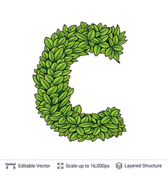 letter c symbol of green leaves vector image