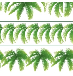 Seamless patterns palm leaves vector