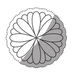 sticker monochrome contour with oval petals vector image vector image