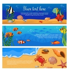 Sea life animals plants banner set vector