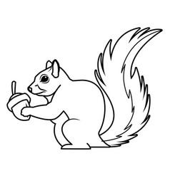 cute squirrel eats nut nature wildlife image vector image