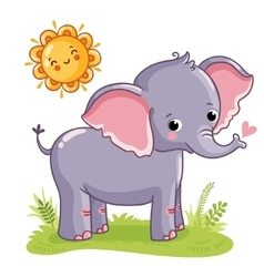 Elephant stands on the sunny meadow vector image vector image