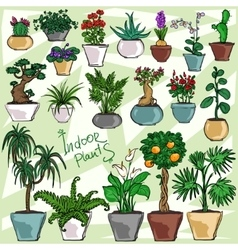 Indoor Plants set vector image