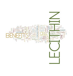 Lecithin benefits text background word cloud vector