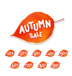 trendy autumn leaf sale tag vector image