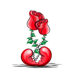two red roses vector image