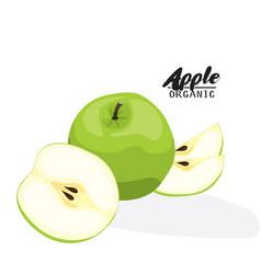 Cartoon apple ripe green fruit vegetarian vector