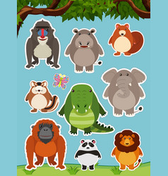 Many wild animals in the field vector