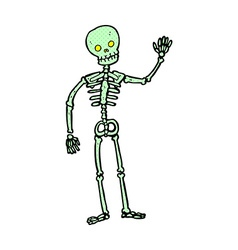 comic cartoon waving skeleton vector image vector image