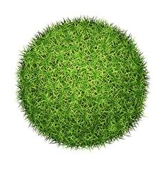 green grass ball vector image
