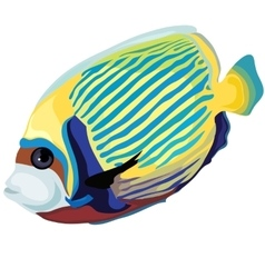 Yellow and blue striped tropical fish isolated vector image