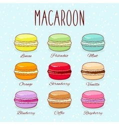 Set of different taste macaroons vector