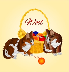 Colors kittens and a basket with balls of wool vector