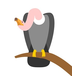 Vulture scavenger bird sitting on branch predatory vector