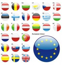 European union flags vector