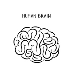 Abstract human brain icon vector