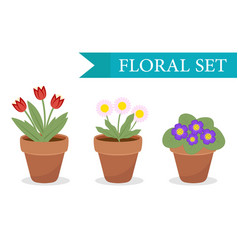 Flower pot with different flowers set flat style vector
