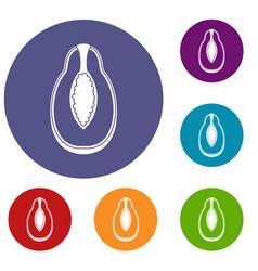 Papaya fruit icons set vector
