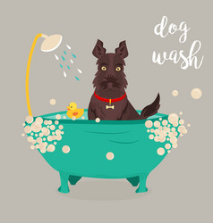 A dog taking a shower vector