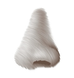 Etched nose vector
