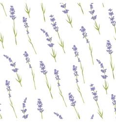 Seamless lavender pattern vector image